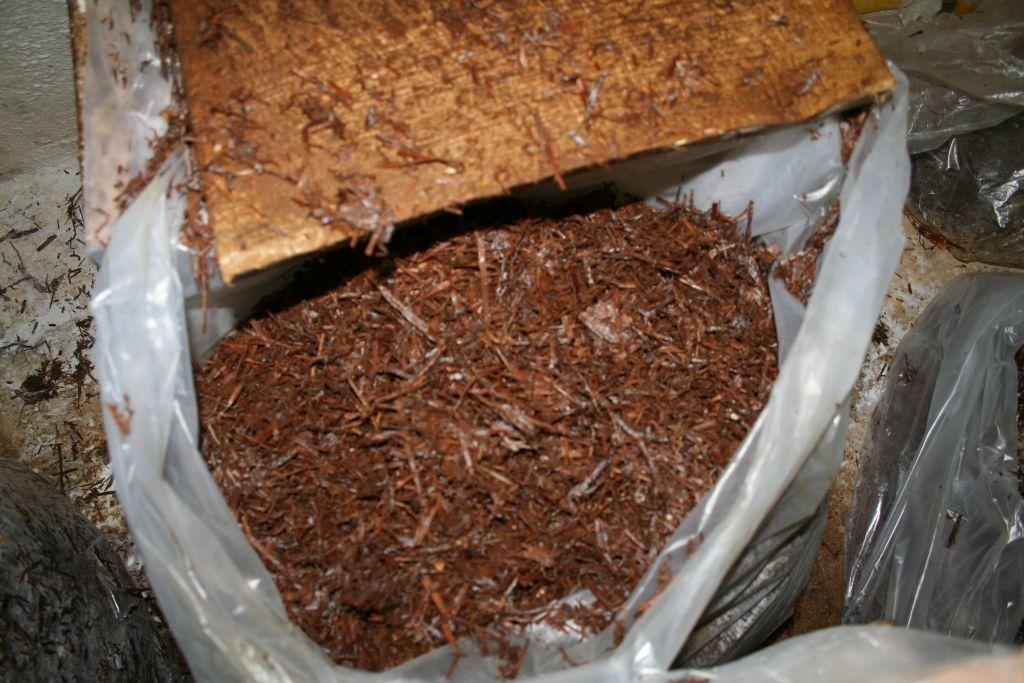 compost1 14